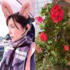 柏木由紀様「AKBとアイドルが大好きなので30歳まで卒業しません♡」